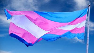 Bandeiras Trans