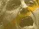 100 dias de governo Bolsonaro